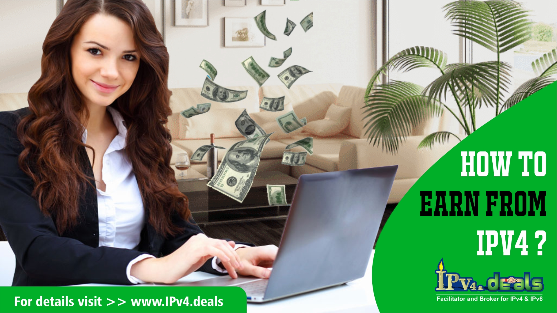 How to earn from IPv4 ?