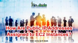How Are Public IP Addresses Assigned to EC2 Instances?