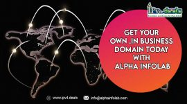 Get Your Own.IN Business Domain Today With Alpha InfoLab